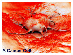 picture of cancer cell